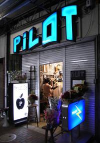Pilot_1_2